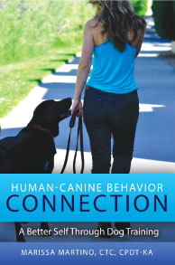 human-canine behavior connection