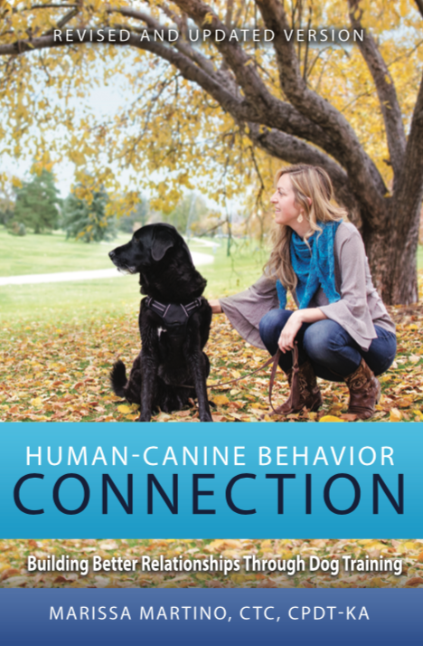 human-canine behavior connection